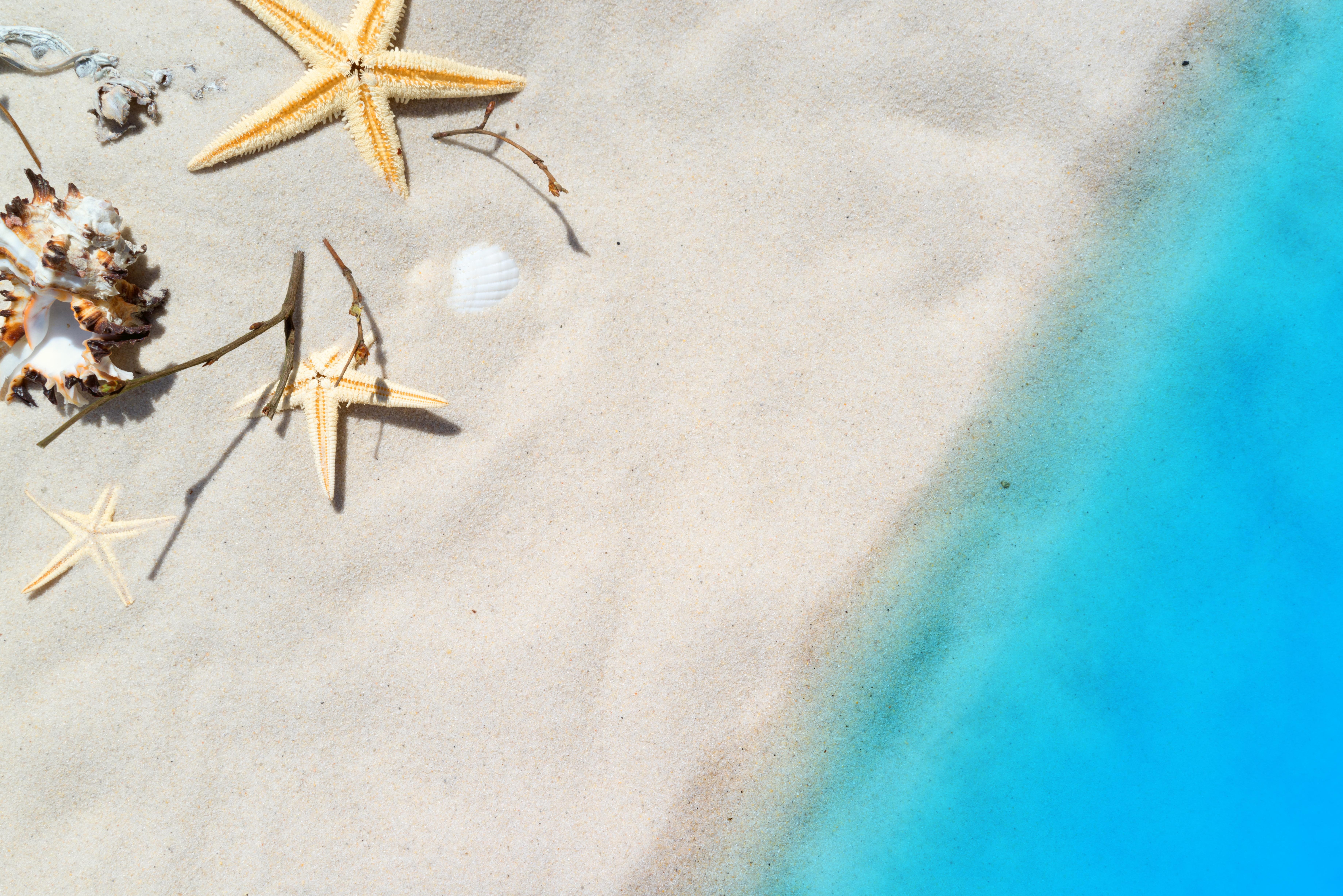 Где найти 15 дней на отпуск и свой проект, не увольняясь с работы
