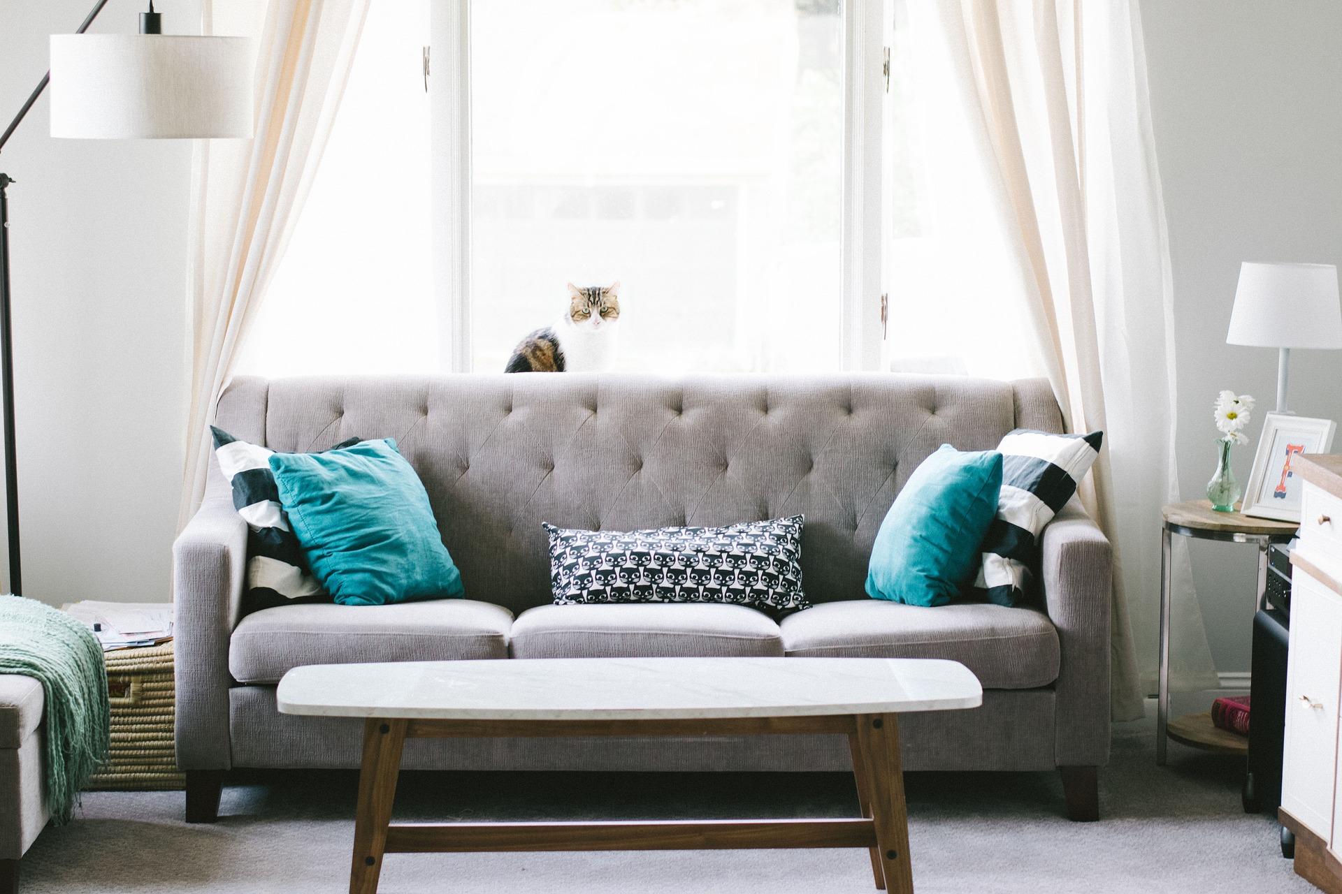 15 минут на уборку: помощники для дома, которые сэкономят ваше время и деньги